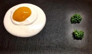 molecular egg 1